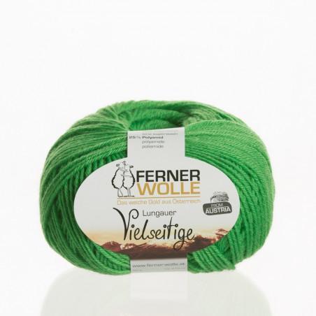 Ferner Wolle Vielseitige 210 - Farbe: V22 wiesengrün